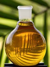 flask of vegetable oil in front of palm leaf